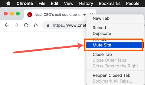 Mute Site in Chrome