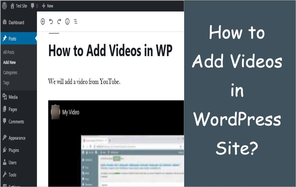 How to Add Videos in WordPress Site?