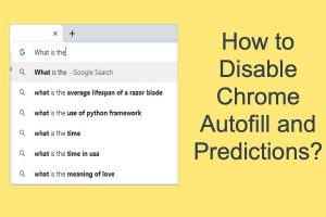 How to Disable Chrome Autofill and Predictions?