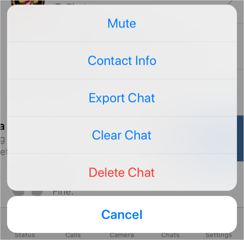 Mute Option on Chat