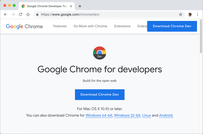 Google Chrome Developer Version