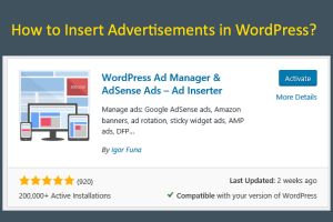 How to Insert Advertisements in WordPress?