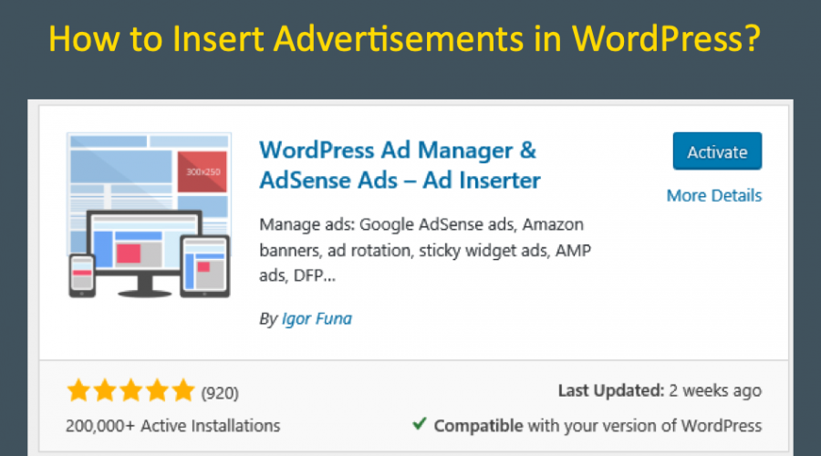 How to Insert Advertisements in WordPress Site?