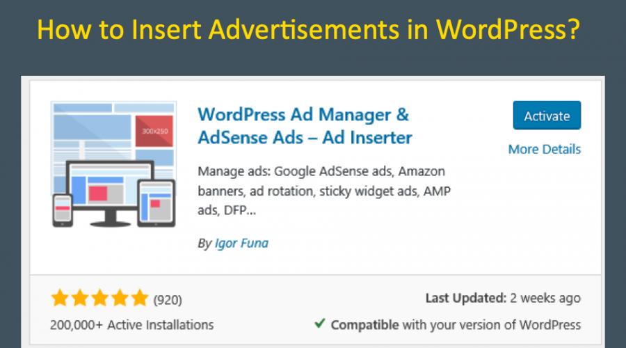 How to Insert Advertisements in WordPress Site?