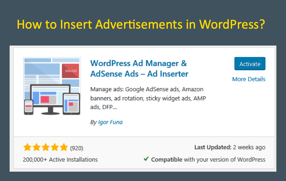 How to Insert Advertisements in WordPress?