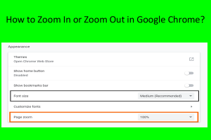 How to Zoom In or Zoom Out in Google Chrome?