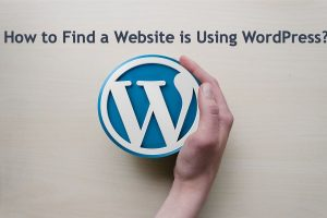 How to Find a Website is Using WordPress?