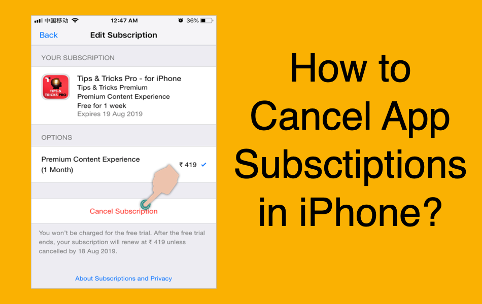 How to Cancel App Subscriptions in iPhone?