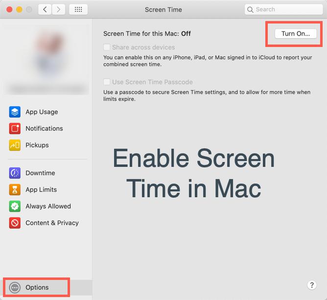 Turn On Screen Time in Mac