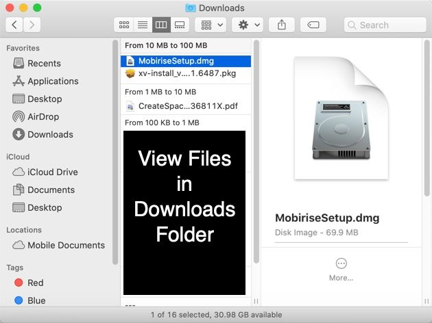 View Files in Downloads