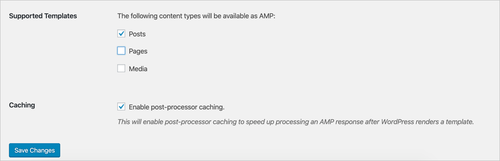 Enable AMP Post Type and Caching