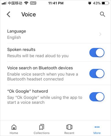 Google Voice Search Settings in Mobile