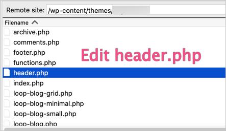 Edit Header File