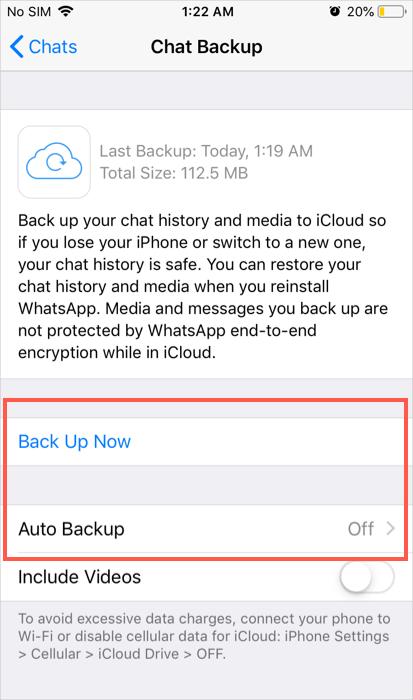 WhatsApp Backup Option