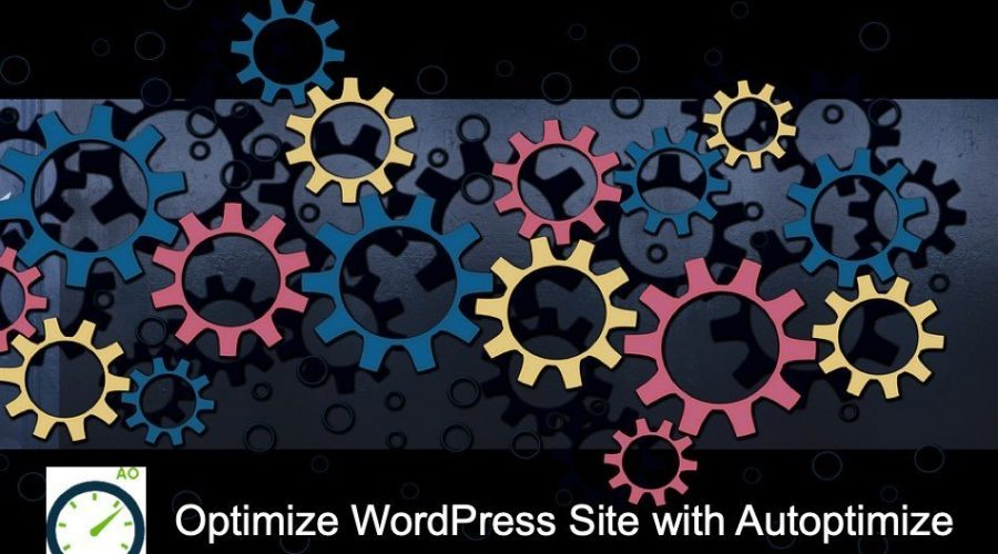How to Properly Setup Autoptimize in WordPress Site?
