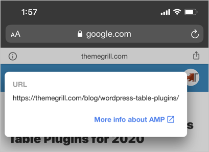 View AMP Pages in Google Search