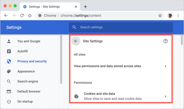 View All Website Permissions in Chrome