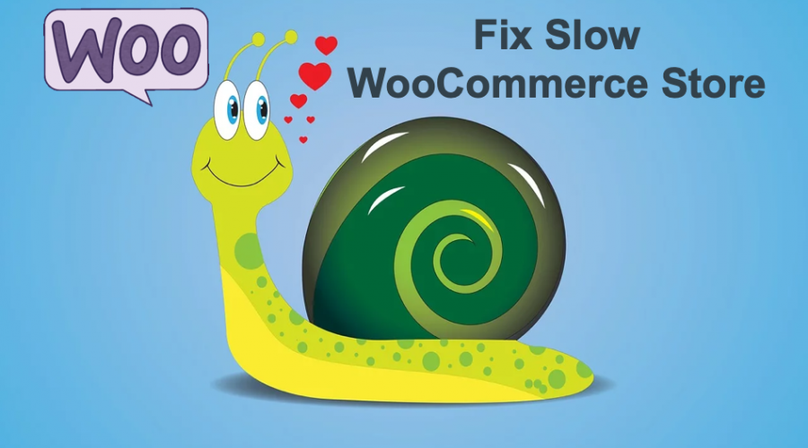 How to Fix Slow WooCommerce Store with WordPress Site?
