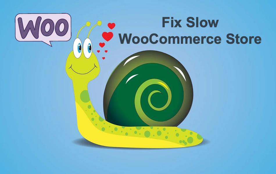 Fix Slow WooCommerce Store