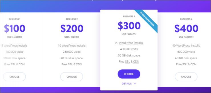 Kinsta Business Plans