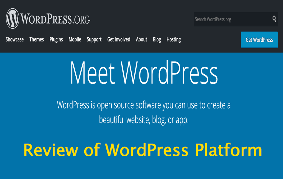 Review of WordPress Platform