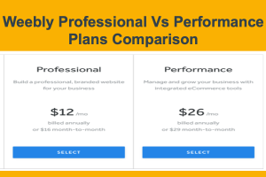 Weebly Professional Vs Performance Plans Comparison