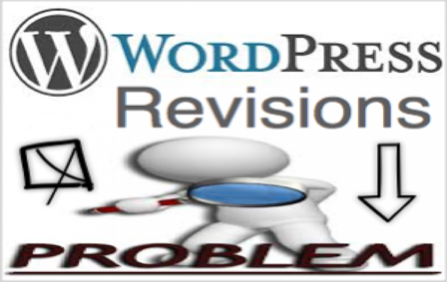 4 Common WordPress Revisions Issues with Fix