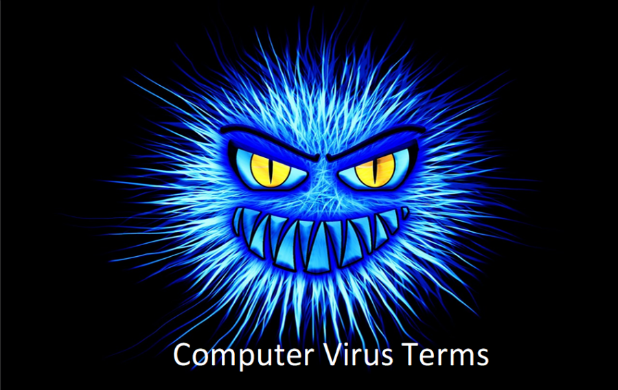 Top 10 Computer Virus Terms You Should Know