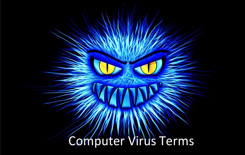 Computer Virus Terms