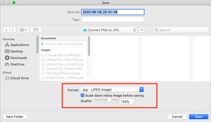 Mac SnagIt Image Conversion Options