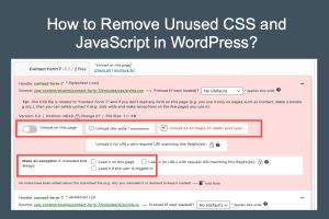 Remove Unused CSS and JS in WordPress