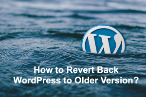 How to Revert Back WordPress to Older Version?