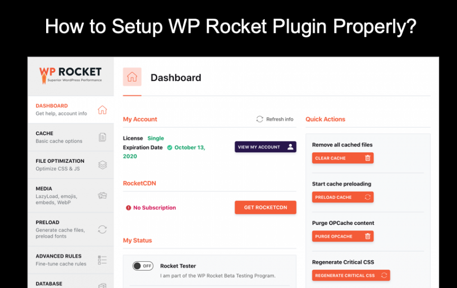 How to Setup WP Rocket Plugin Properly?
