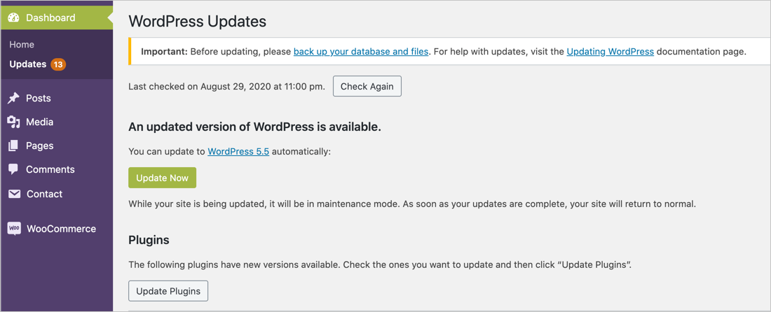 Update WordPress Version, Themes and Plugins