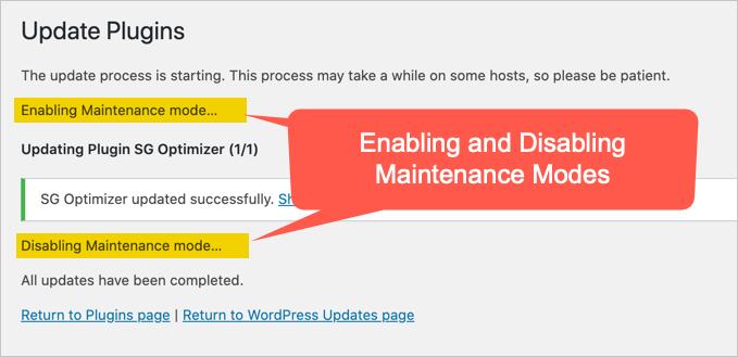 Maintenance Mode During Plugin Update