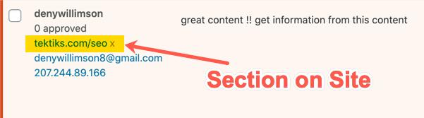 Раздел сайта в URL комментария