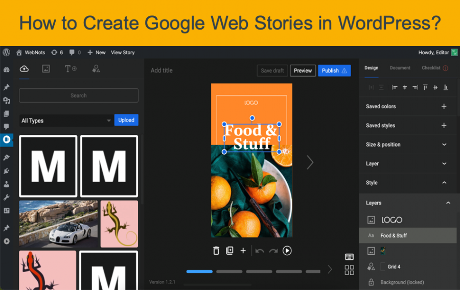 How to Create Google Web Stories in WordPress?