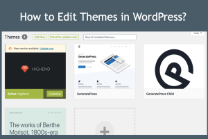 How to Edit Themes in WordPress?