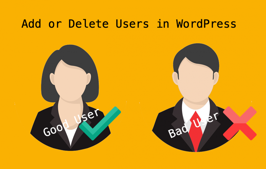 Add or Delete Users in WordPress