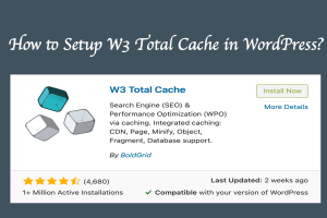 How to Setup W3 Total Cache in WordPress?