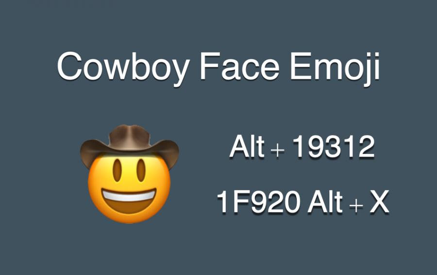 Cowboy Face Emoji