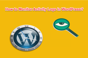 How to Monitor Activity Logs in WordPress?