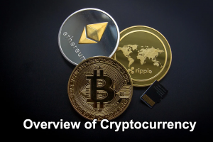 Overview of Cryptocurrency