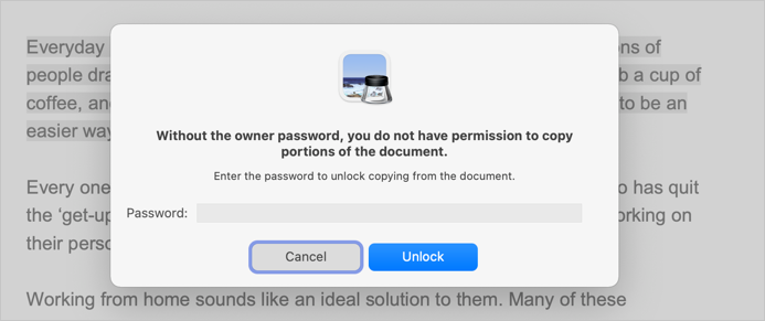 Owner Password Protected PDF File