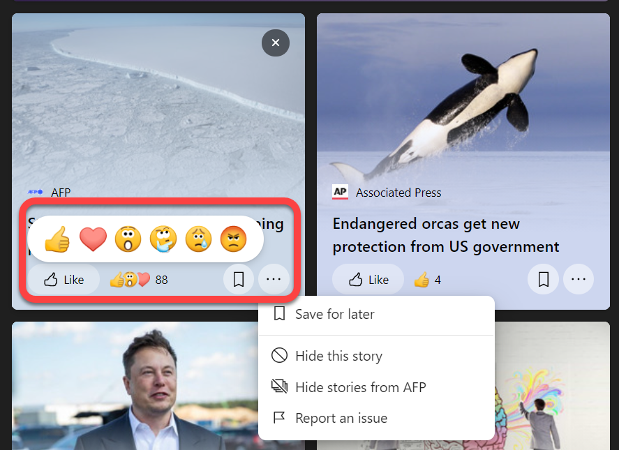 News Feed Options in the Widget Area