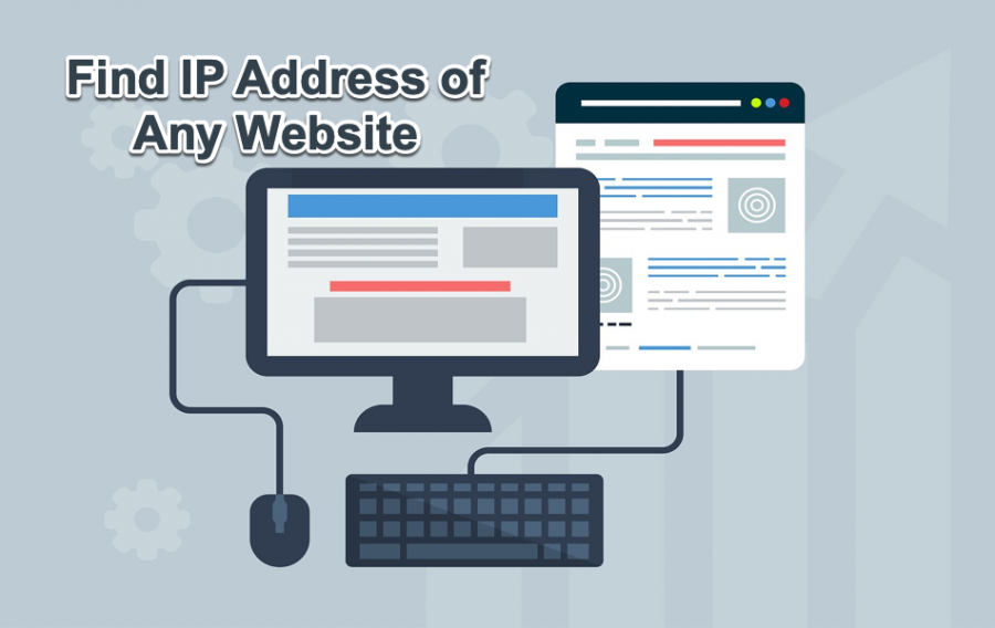 Find IP Address of Any Website