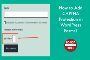 How to Add CAPTHA Protection in WordPress Forms?