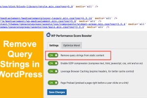 Remove Query Strings in WordPress