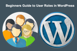Beginners Guide to User Roles in WordPress