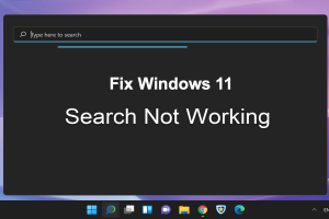 Fix Windows 11 Search Not Working